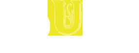 logo-Touro